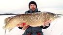 ШОК! Моя лучшая зимняя рыбалка ТРОФЕЙНАЯ ЩУКА НА ЖЕРЛИЦЫ