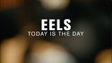 Eels - Today Is The Day (Live on The Current)