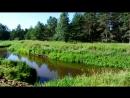 Утро после закрытия фишинга. Наша стоянка, центральная поляна и речка.