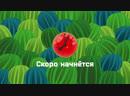 Отава Ё ТВ - Зелёнка (Гость - Карл Хламкин)