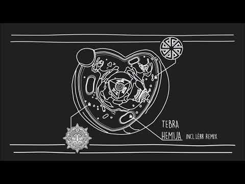 Tebra - Hemija (Original Mix) [Ritual Records]