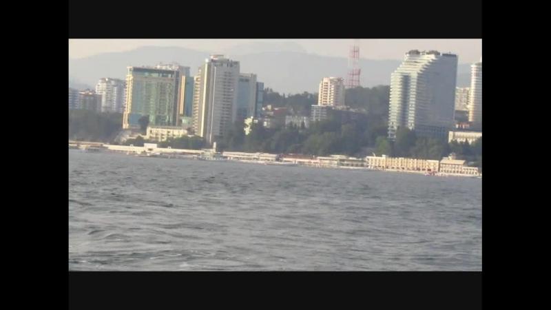 Сочи, яхта, дельфины 2018.05.26