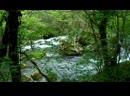 Походная баня на горной реке
