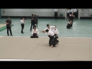 Dynamic Aikido Ryuji Shirakawa - 56th All Japan Aikido Demonstration 2018