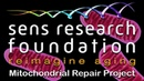 SENS Research Foundation — MitoSENS Mitochondrial Repair Project   Crowdfunding Campaign