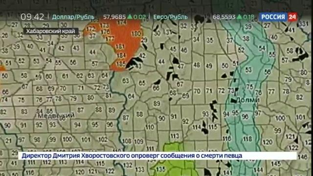 Новости на Россия 24 • Система Кедр - новые технологии против черных лесорубов