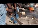 Marseille aix : Étape supérieure pour les migrants de G Soros et J Attali a la machette et au couteau ... .