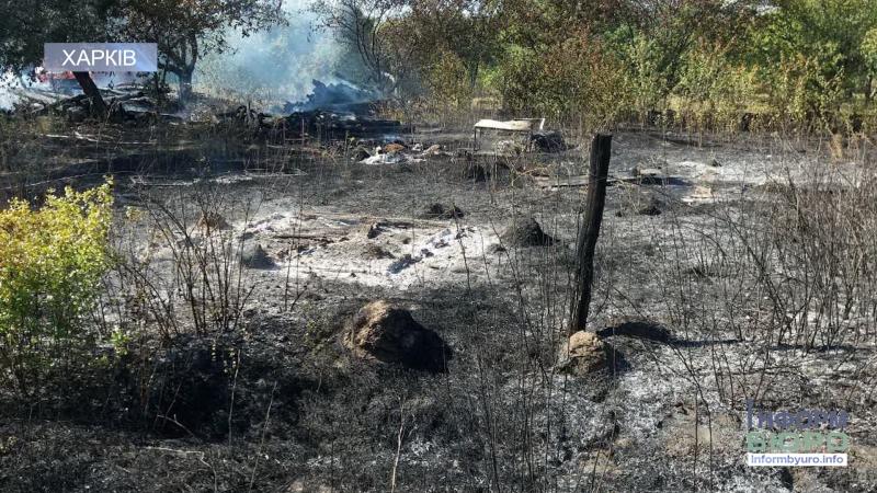 Згоріла заживо на згарищі сухої трави виявили тіло 82-річної жінки