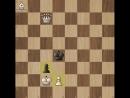 ♚ ШАХ И МАТ ♚Разминочная шахматная задача