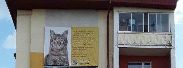 В Кобрине на улицах города появилась первая социальная реклама зоозащитной тематики