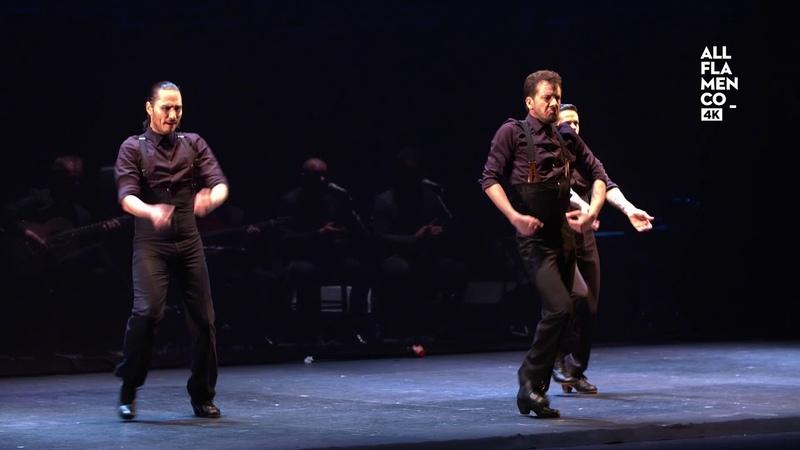 Flamenconautas Vamo' allá Zapateado bailaores 9 13 ALL FLAMENCO 4K
