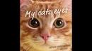 My cat's eyes (Instrumental)