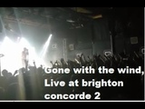 Architects Gone with the wind Live at the Brighton Concorde 2