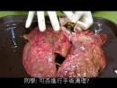 Курение Убивает, Эксперимент