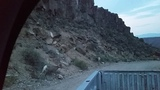 Bighorn Sheep in the Rio Grande Gorge at Sunset