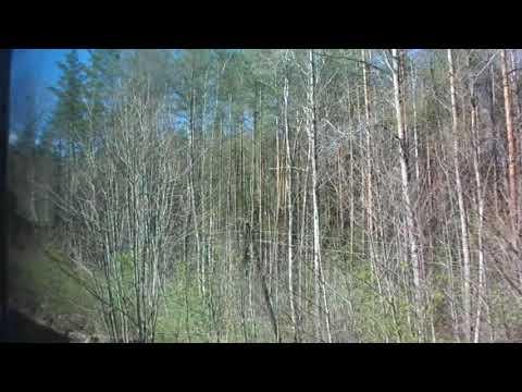 Из окна кругляка ЭР2К 930 поездка в Советский
