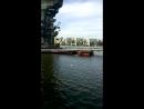 Москва. памятник Петру Великому. Чайки