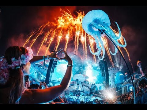 Enjoy the Madness EDM Festival MIX!