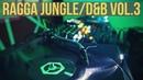 Ragga Jungle/Drum Bass Mix Vol.3 - 2019
