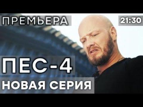 Сериал ПЕС - 4 сезон - 4 серия - ВСЕ СЕРИИ смотреть онлайн | СЕРИАЛЫ ICTV