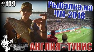 Рыбалка возле Волгоград Арены и матч Англия - Тунис