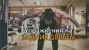 Как накачать заднюю дельту плеча упражнения для тренажерного зала