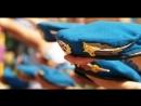 Мы Помним Слава Героям Кто Погиб в Чечне Никто Кроме Нас автор исп Андрей Ермаков Фартовый Парень Орган Концертов Ко