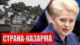 Литва собралась на войну с Россией. В бой пойдут подводные Патриоты
