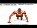 Упражнения для мышц груди отжимания по спартански
