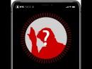 Face ID: угадай известную личность по силуэту