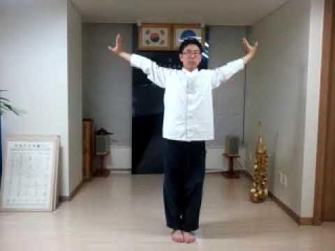 YipDanHaengGong Kouk Sun Do