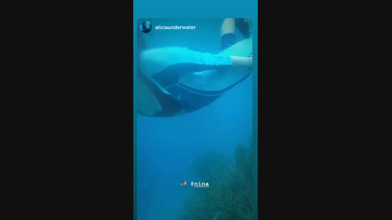Nina Dobrev on Instagram Stories 14.12.18