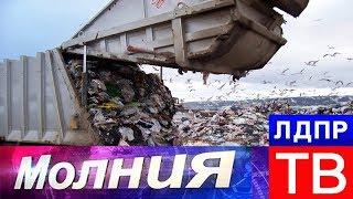 Во Владимирской области борются с Орловщиной