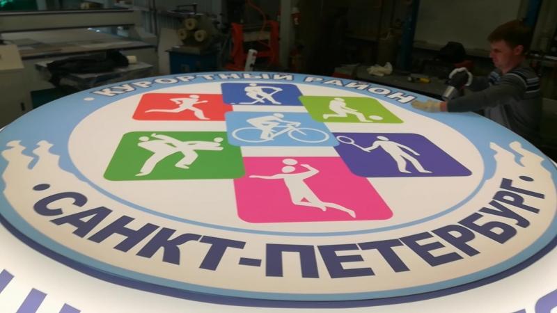 Эмблема ледовой арены г. Сестрорецк