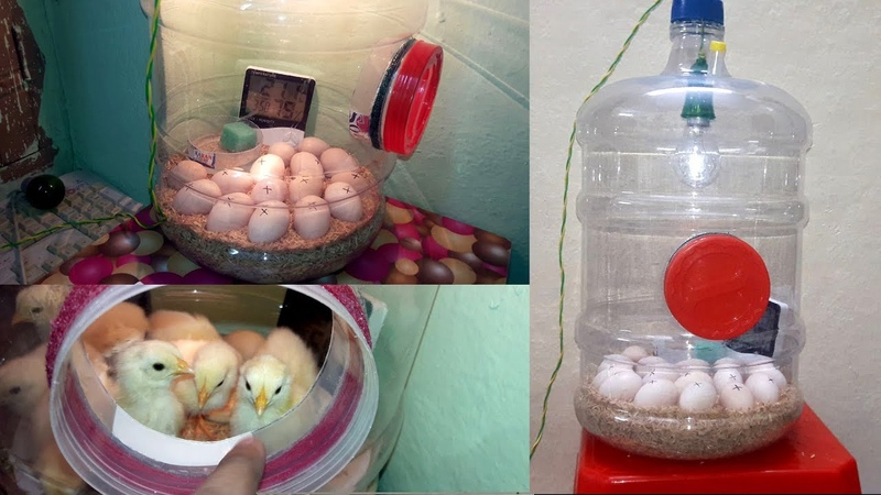 DIY - Homemade Incubator || How To Make Egg Incubator Simple And Easy (Hatching Chicken Eggs)