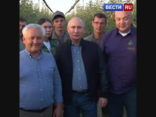 Владимир Путин поздравил с праздником работников сельского хозяйства.