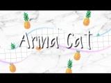 интро arina cat intro by Milkis 1280x720 3,78Mbps 2018-09-16 07-53-34.mp4