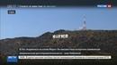 Новости на Россия 24 Знаменитая надпись на голливудских холмах превратилась в святую марихуану