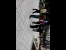 Live Гатчина. Агитация