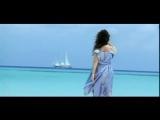 Лина Милович - Остров белых птиц (2006)