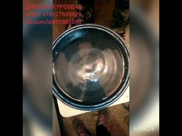 Купаем ЁжМогарыч 😊ДИПЛОМ КУРСОВАЯ тvw 79127939429 vk.comid420983559
