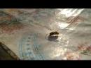 Пчелка труженица