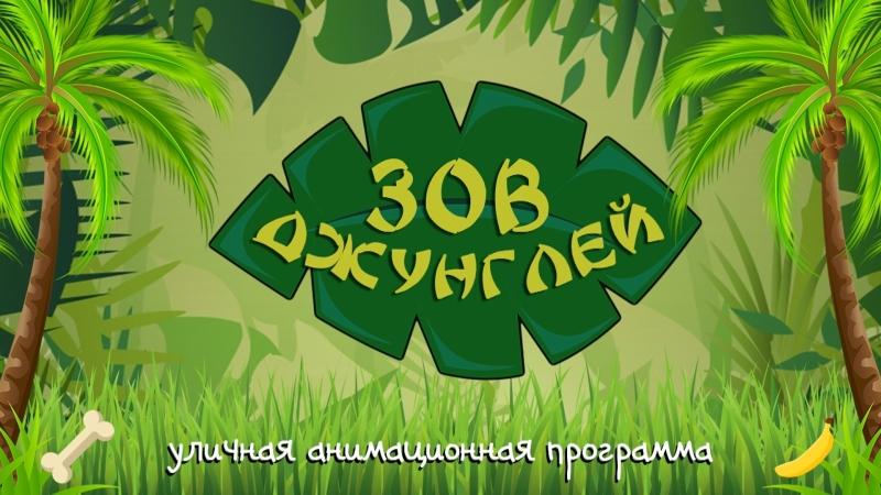 Уличная анимационная программа Зов Джинглей