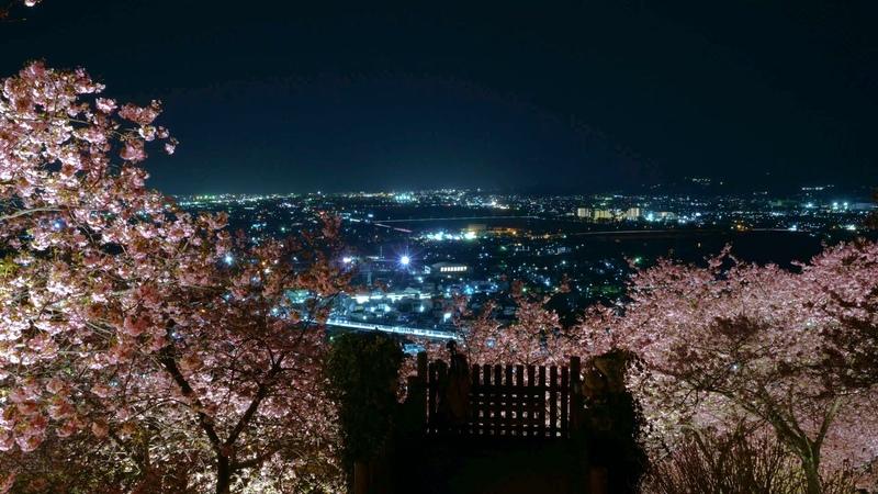 Matsuda Cherry Blossom Festival Time lapse short version