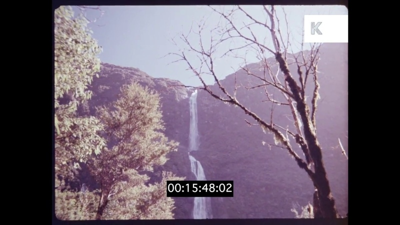 Forest and Waterfall in 1970s New Zealand, HD