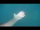 Гурзуф рыбу иглу можно спокойно поймать руками