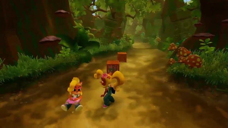 Looks like they didnt bother to actually make this level Crash only because they didnt expect anyone to bring Coco here