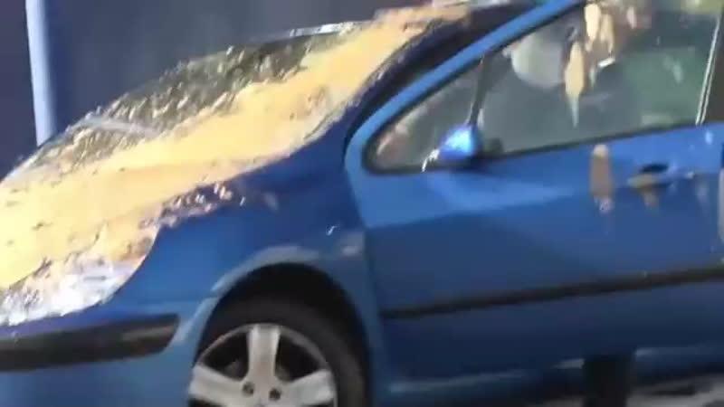 Стоит помыть машину и насрут