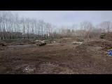 Кто срубил деревья у Медоборудования?