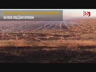 Облако дыма над Владикавказом появилось из-за горящего сухостоя